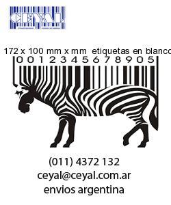 172 x 100 mm x mm  etiquetas en blanco rectangulares