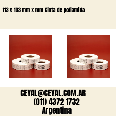 113 x 103 mm x mm Cinta de poliamida