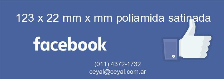 123 x 22 mm x mm poliamida satinada