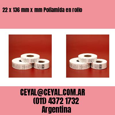 22 x 136 mm x mm Poliamida en rollo