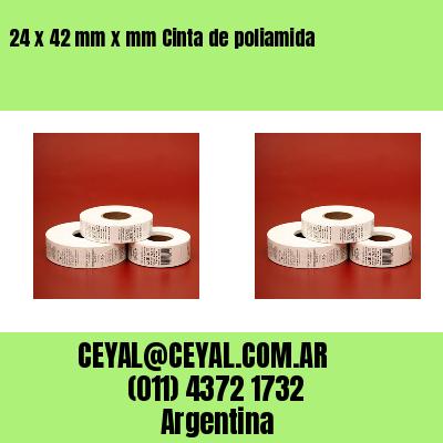 24 x 42 mm x mm Cinta de poliamida