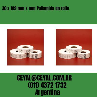 30 x 109 mm x mm Poliamida en rollo