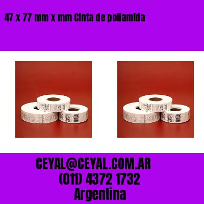 47 x 77 mm x mm Cinta de poliamida