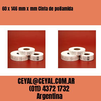 60 x 146 mm x mm Cinta de poliamida
